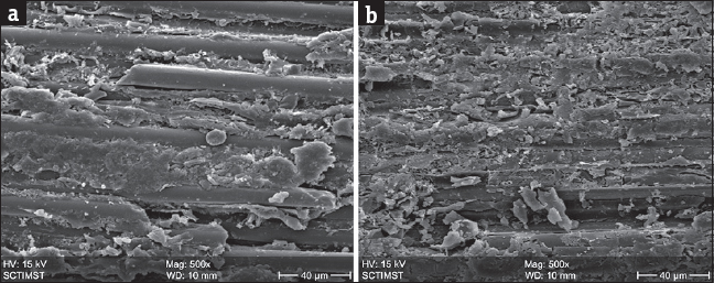 Figure 3: (a) Scanning electron microscopic photograph of glass fiber post with hydrogen peroxide pretreatment revealing exposure of glass fibers with modification of surface epoxy resin matrix. (b) Scanning electron microscopic photograph of quartz fiber post with hydrogen peroxide pretreatment revealing exposure of quartz fibers with modification of surface epoxy resin matrix