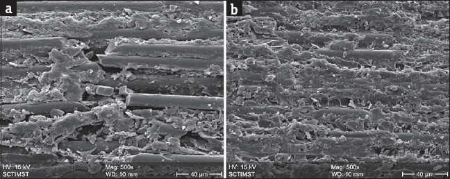 Figure 4: (a) Scanning electron microscopic photograph of glass fiber post with phosphoric acid pretreatment showing surface modifications and glass fiber exposure. (b) Scanning electron microscopic photograph of quartz fiber post with phosphoric acid pretreatments showing surface modifications and quartz fiber exposure