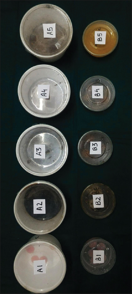 Figure 2: Samples stored according to different groups