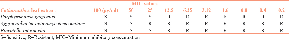 Table 2: Minimum inhibitory concentration values of <i>Catharanthus</i> leaf extract against <i>Porphyromonas gingivalis, Aggregatibacter actinomycetemcomitans</i>, and <i>Prevotella intermedia</i>